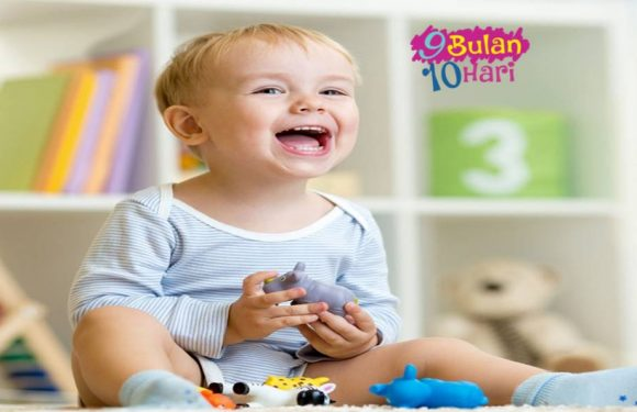 Tahap Perkembangan Bayi Anda Sejak Lahir Yang Perlu Anda Tahu